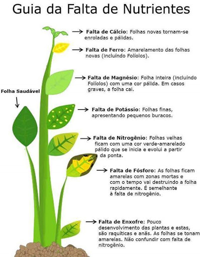 importância dos fertilizantes