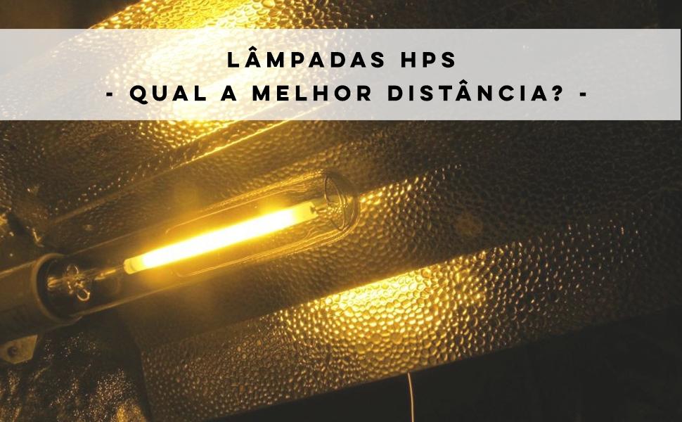 O que são lâmpadas HPS e qual a melhor distância para as plantas?