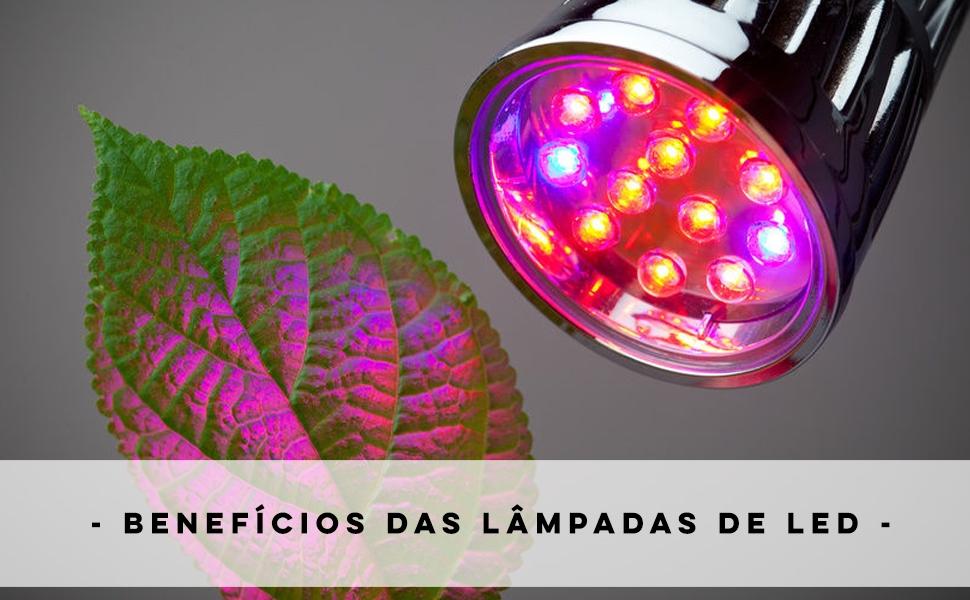 Cultivo Indoor – Benefícios das lâmpadas de LED