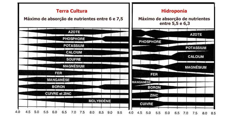 pH ideal para Cultivo Indoor