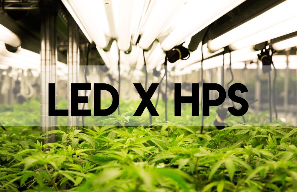 Diferença entre  HPS x LED